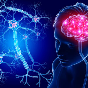 Neuroplasticity and your brain Infinite Minds